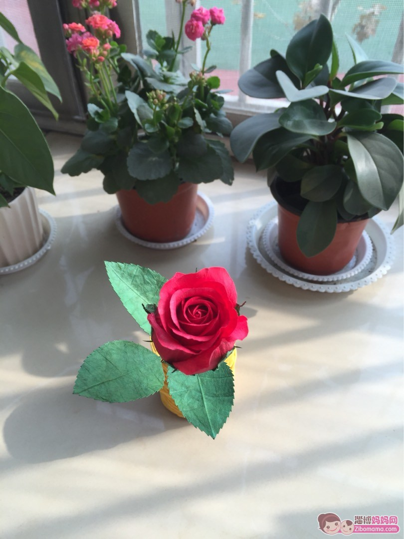 用纸做的玫瑰花图片